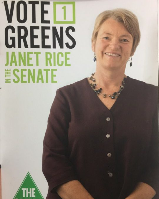 2013 Janet Rice Poster